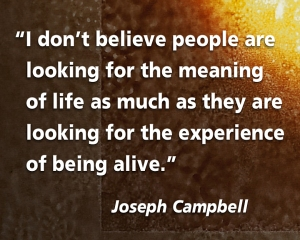 Joseph Campbell Quote at Authentic Women Circle